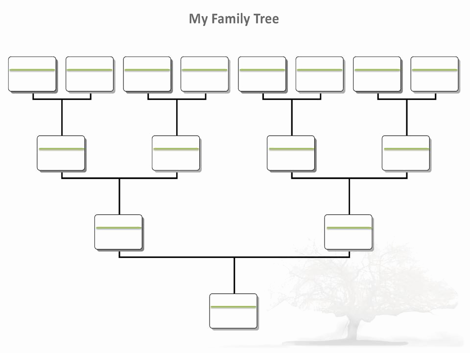 Template for Family Tree New Blank Family Tree Template