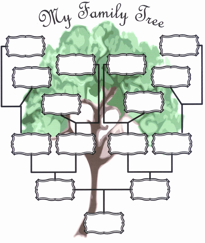 Template for Family Tree New Family Tree Template