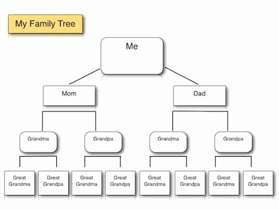 Template for Family Tree New Family Tree Templates Find Word Templates