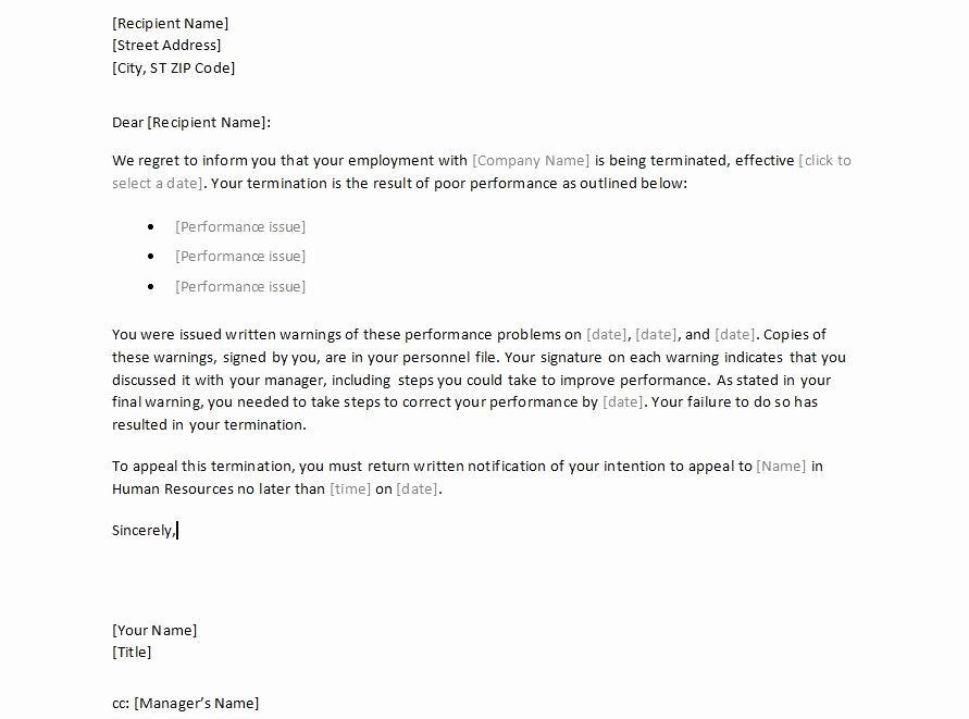 Termination Letter to Employee New Sample Employee Termination Letter