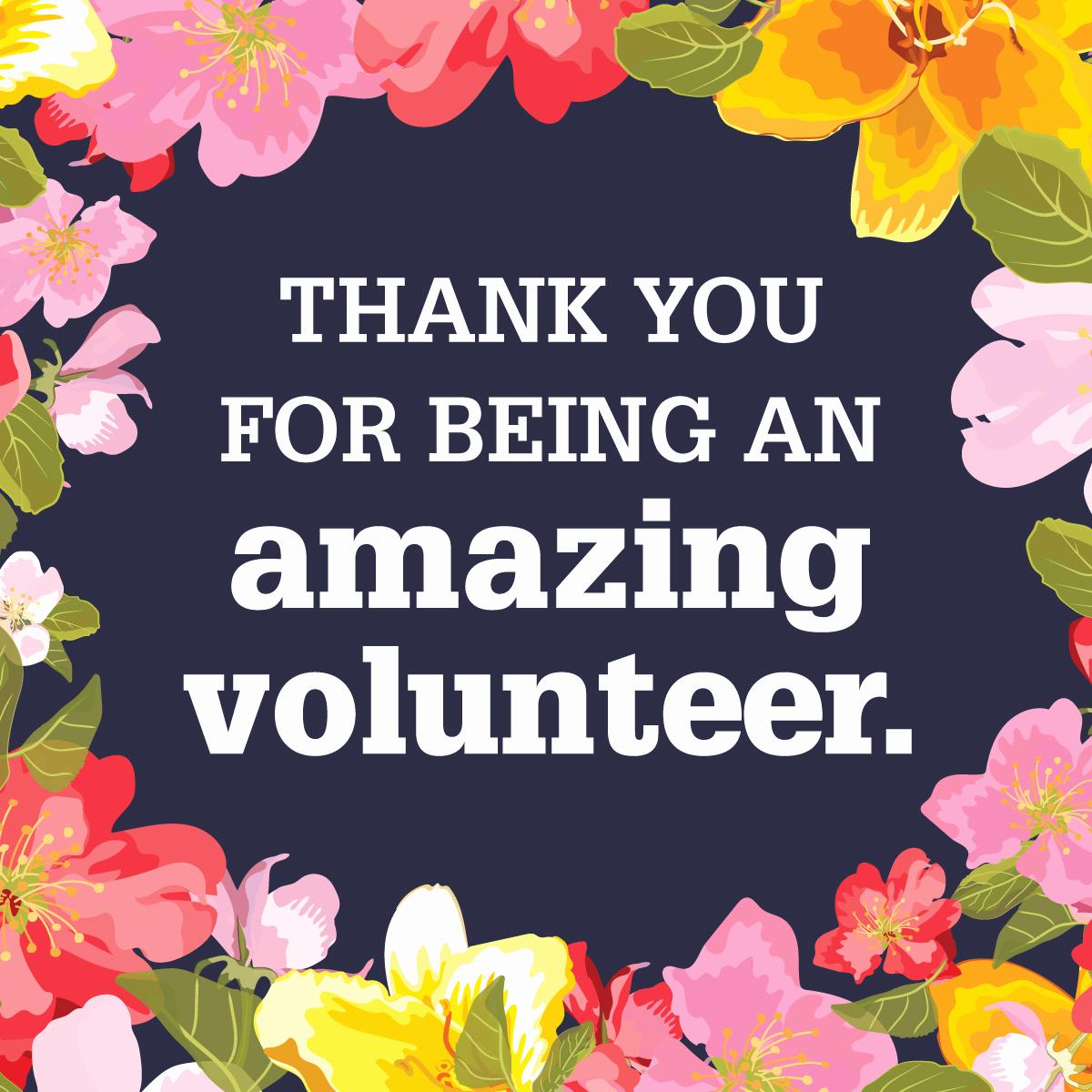 Thank You for Volunteering Unique Graphics for School Volunteer Appreciation Pto