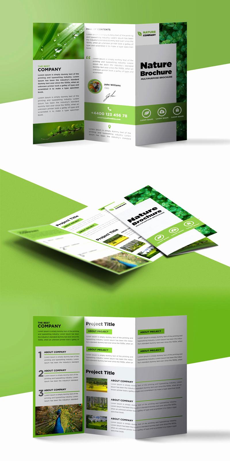 Tri Fold Brochure Template Psd Elegant Nature Tri Fold Brochure Template Free Psd
