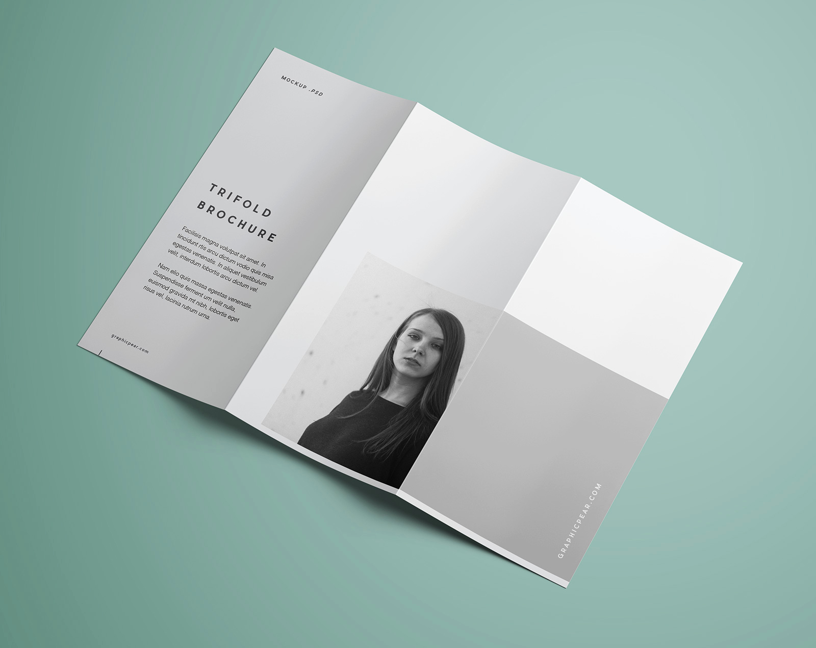Tri Fold Brochure Template Psd Fresh Free Premium Tri Fold Brochure Mockup Psd Good Mockups