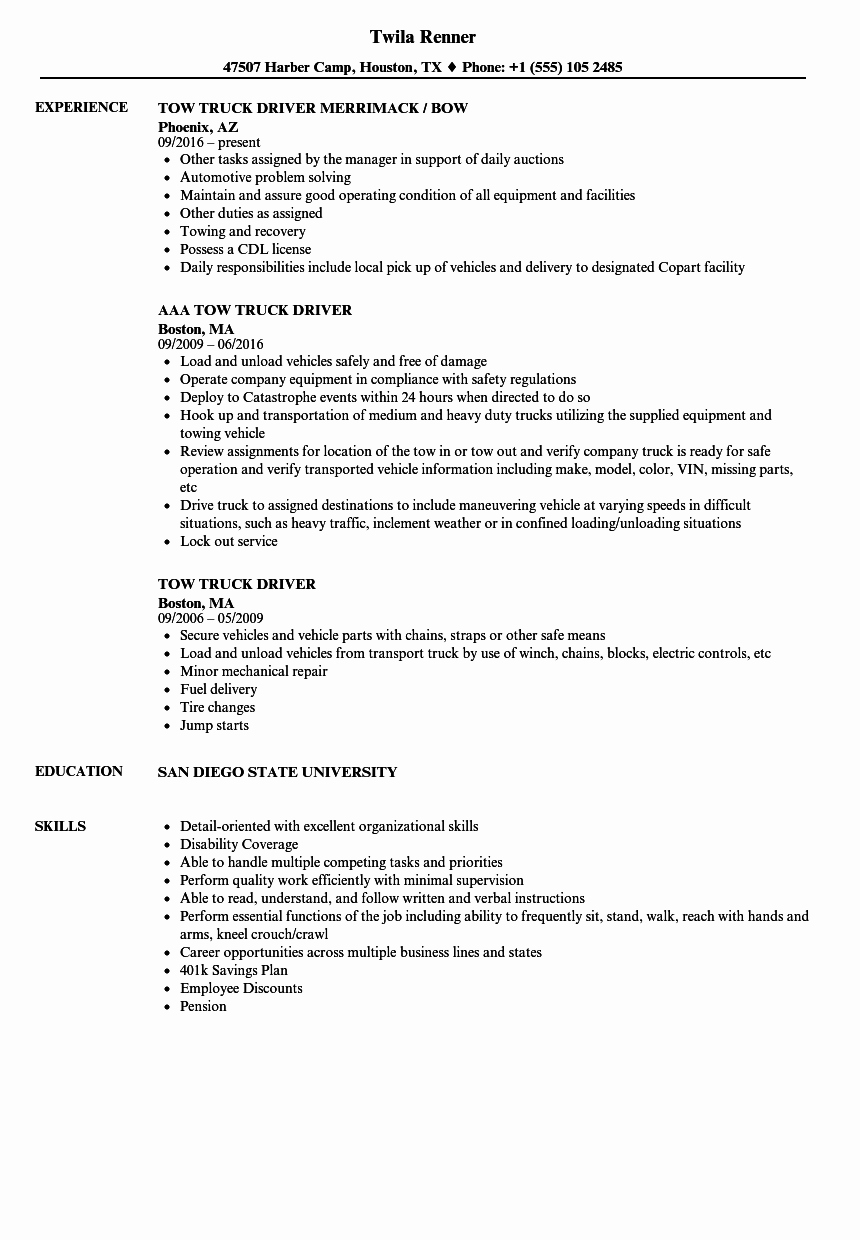Truck Driver Resume Sample Inspirational 20 Car Driver Cv Sample