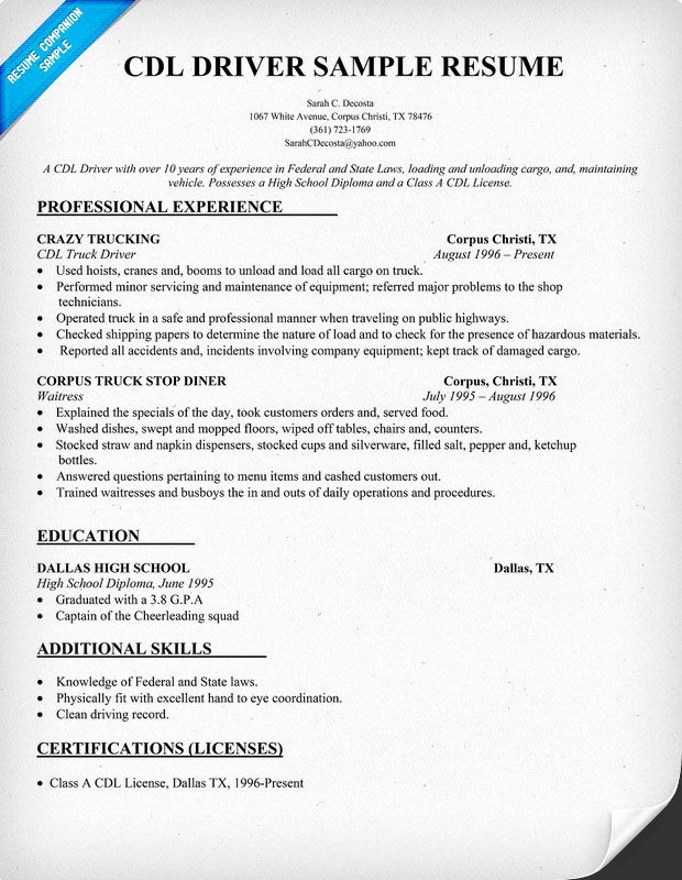 Truck Driver Resume Sample Unique Cdl Driver Resume Sample Resume Panion