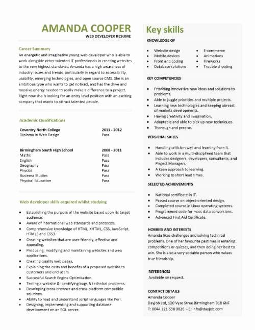 Web Developer Resume Sample New Entry Level Web Developer Resume Template