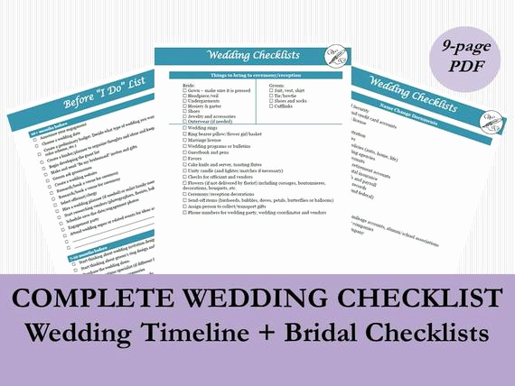 Wedding Planning Timeline Template New Wedding Planning Timeline Template Wedding Checklist