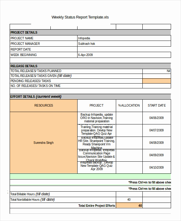 Weekly Status Report Template Awesome Status Report Template 19 Free Word Pdf Documents