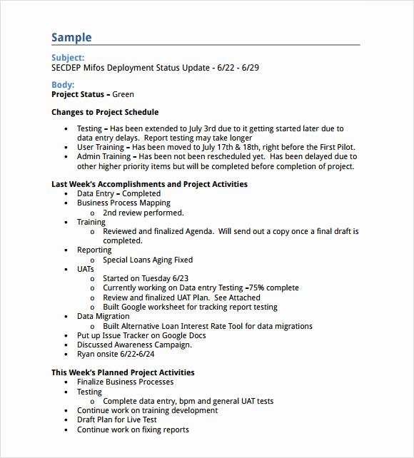Weekly Status Report Template Elegant Sample Status Report 10 Example format