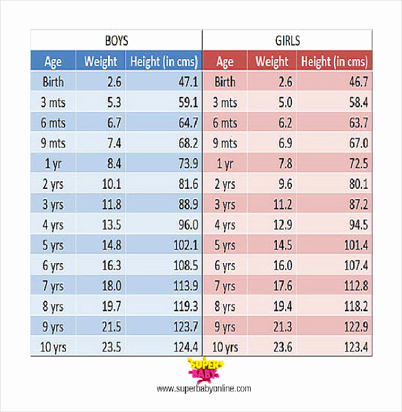 Weight Height Age Charts Beautiful Height Weight Chart Template 11 Free Word Excel Pdf
