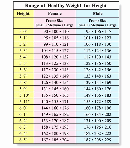 Weight Height Age Charts Beautiful How to Know if I Am Fat