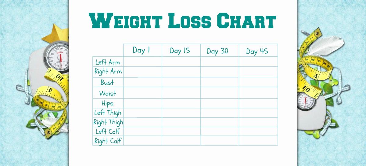 Weight Loss Progress Chart Luxury Tracking My Progress – the Worlds Biggest Fridge Magnet